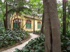 Parque Trianon, São Paulo. Imagem: Janaína Calaça.