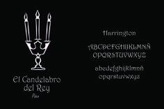Logo y tipografía