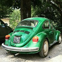 //☆》vw beetle / tuscany