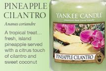 A tropical treat… fresh, island pineapple served with a citrus touch of cilantro and sweet coconut