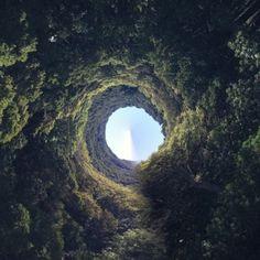 down the rabbit hole essay
