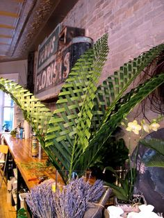 I stepped into the shop the other day and stopped dead in my tracks to stare at the woven Palm Leaves that Molly made. I stood there so long. Palm Frond Art, Palm Fronds, Flax Weaving, Coconut Leaves, Flax Flowers, Sogetsu Ikebana, Leaf Crafts, Church Flowers, Palm Sunday