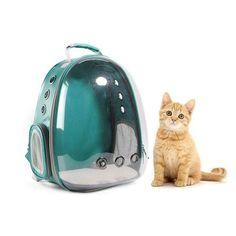 Portable Pet/Cat/Dog/Puppy Backpack Carrier Bubble, New Space Capsule Design 360 degree Sightseeing Rabbit Rucksack Handbag Tran Cat Backpack Carrier, Puppy Backpack, Cat Carrier, Small Pet Carrier, Pet Bag, Small Cat, Cat Treats, Camping, Fur Babies