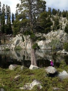 5 Lake hike in Alpine Meadows