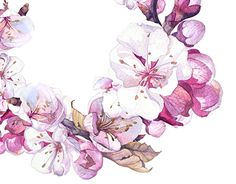 "Check out this @Behance project: ""Sakura 