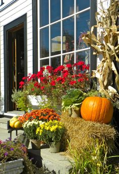 Hill Top Store Front in Fall