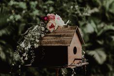 TANIA & MAURICIO WEDDING DAY - Brenda Alanis Photographer Wedding Day, Bird, Portrait, Outdoor Decor, Photography, Pi Day Wedding, Photograph, Men Portrait, Birds