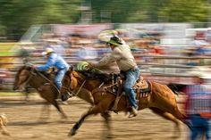 Rodeo (photo by John Hamilton) southern-lovin