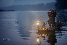 Evening Companion by Bobby Joshi Photography - Photo 130810151 - 500px
