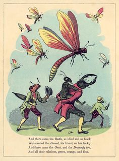 from 'the butterfly ball and the grasshopper's feast'(1806, illustrator unknown)