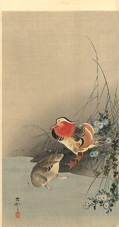 """Mandarin Ducks"" by Ohara Koson Korean Painting, Japanese Painting, Chinese Painting, Art And Illustration, Illustrations, Japanese Bird, Japanese Prints, Art Canard, Ohara Koson"