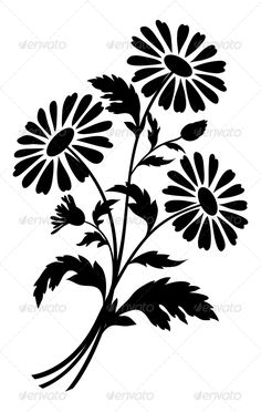 Chamomile flowers, silhouettes