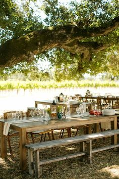 Rehearsal Dinner Decor Ideas Wedding Inspiration Boards Photos on WeddingWire