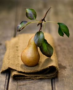 Rikki Snyder Photography   Beautiful Pear