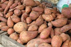 Sweet potatoes are native to America and are one of the countrys most nutritious vegetables. Photo courtesy iStockphoto/Thinkstock (HobbyFarms.com)