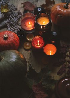 Autumn Aesthetic, Witch Aesthetic, Aesthetic Gif, Mabon, Samhain, October Country, Season Of The Witch, Autumn Cozy, Autumn Photography