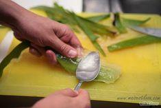 Como usar Babosa (Aloe Vera) para Estimular o Cabelo a Crescer - Mais Estilosa