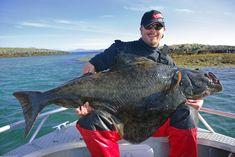 Heilbutt Standplätze finden in Norwegen | Finding halibut spots in Norway
