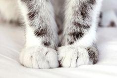 love those little feet ♥