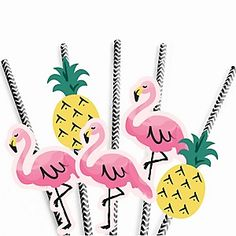 Flamingo - Party Like a Pineapple - Birthday Party Theme | BigDotOfHappiness.com
