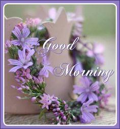 Good Morning Sunday Images, Good Morning Flowers, Happy Birthday, Greeting Cards, Animal, Photos, Happy Brithday, Pictures, Urari La Multi Ani