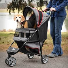 DOG STROLLER CARRIAGE Gen 7 Pets Stroller The Regal for pets up to 25 lbs *** Insider's special review you can't miss. Read more  (This is an amazon affiliate link. I may earn commission from it)