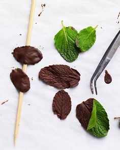 Chocolate mint leaf garnishes are great for decorating cakes