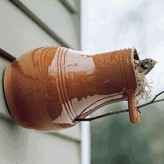 Glazed pottery bird house