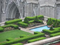 Rooftop garden, NYC