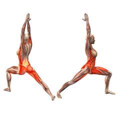 Warrior pose, left leg forward, right leg straight - Virabhadrasana leg straight right - Yoga Poses | YOGA.com