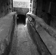 """[138519] [Colosseum: partial view of the tunnel called the """"Passaggio di Commodo"""" (Rome, Italy)] [graphic] 