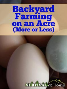 Backyard Farming on an Acre (More or Less) | Survival at Home | #prepbloggers #backyard #farm
