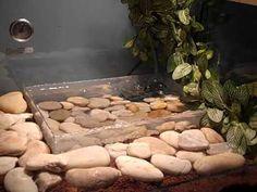 Ball python cage setup (very cool)