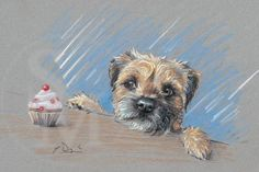 Border Terrier dog pencil sketch by Paul Doyle Pencil Drawings Of Animals, Animal Sketches, Cute Drawings, Drawing Animals, Border Terrier, Animals And Pets, Cute Animals, Terrier Dogs, Terrier Mix