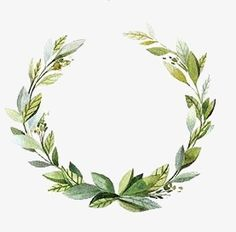 Small fresh garland PNG and Clipart Watercolor Projects, Wreath Watercolor, Watercolor Flowers, Watercolor Art, Green Watercolor, Green Garland, Green Wreath, Floral Wreath, Leaf Border