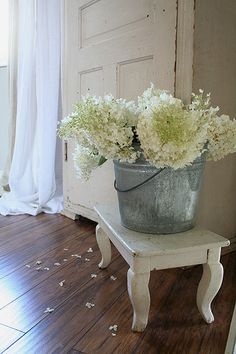 need white hydrangeas....what in the world is a matter with me...? I have 15 hydrangeas...any white? nope....sheesh!