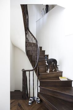 This modern hallway brings traditional dark wood flooring bang up to date with the complimentary white walls. Dark Staircase, Modern Staircase, Staircase Design, Staircase Ideas, Staircase Remodel, Staircase Makeover, Hardwood Stairs, Wooden Stairs, Modern Victorian
