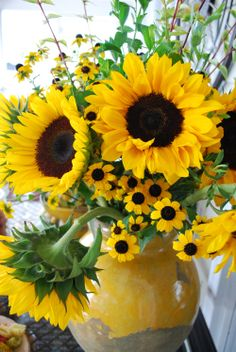 It is SO WORTH starting sunflowers from seeds and planting them EVERYWHERE. You will have bouquets enough for every room come late summer and  fall