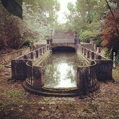 A mossy reflecting pool on an abandoned estate in Florida. Abandoned house, home, overgrown. Old Buildings, Abandoned Buildings, Abandoned Places, Abandoned Library, Haunted Places, Abandoned Mansions, Old Houses, Places To Go, Beautiful Places