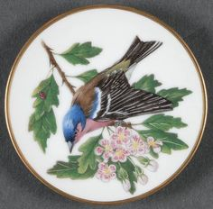 Franklin Mint Miniature Songbirds of The World: Chaffinch Clock Painting, China Painting, Vintage Plates, Vintage Birds, Bird Design, Design Art, Painted Plates, Franklin Mint, Beautiful Birds