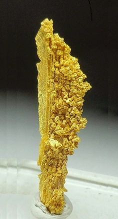 Native gold from Grass Valley mine, Sierra, CA.
