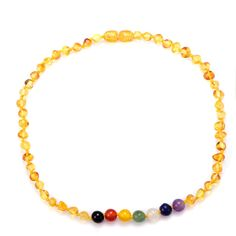 Natural Baltic Amber 7 Chakra Bracelet Necklace