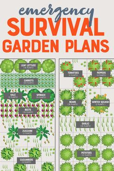 Cheap and Easy Emergency Vegetable Garden - Even the most robust stockpile runs out, but your ability to grow your own food never will. Here's how to plant a quick emergency vegetable garden, cheap. Source by wholefully - The Plan, Vegetable Garden Planning, Vegetable Garden Design, Vegetable Gardening, Gardening Books, Vegtable Garden Layout, Urban Gardening, Gardening Tips, How To Plant Carrots