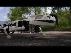 The Pleurobot robo-salamander crawls and swims like a real amphibian - http://www.baindaily.com/the-pleurobot-robo-salamander-crawls-and-swims-like-a-real-amphibian/