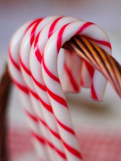 The 10 Skinniest Holiday Treats