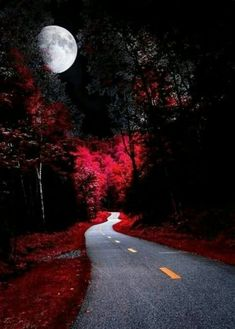 Out of this World Beautiful Moon, Beautiful Places, Beautiful Pictures, Beautiful Status, Amazing Photography, Nature Photography, Shoot The Moon, Gothic Aesthetic, Galaxy Painting