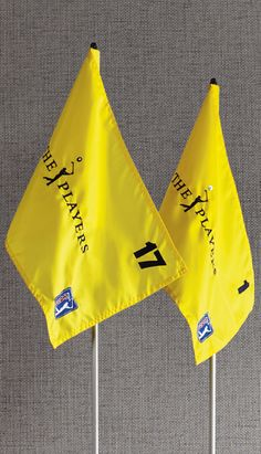 The unofficial 5th Major of the PGA TOUR, THE PLAYERS Championship is one of the most exciting events of the season, hosting all the biggest names in golf. And, now you can own an exclusive piece of history from the May 2015 tournament … the flag, pin and cup from the famed 17th hole at TPC Sawgrass.