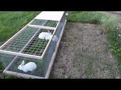 Rabbit Tractor - YouTube
