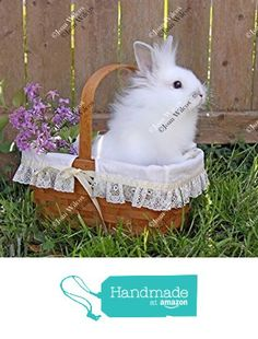 Cute White Furry Baby Bunny Rabbit in a Basket Hare Easter Original Fine Art Photography Wall Art Photo Print from JWPhotography Gallery http://www.amazon.com/dp/B017TI2G2U/ref=hnd_sw_r_pi_dp_QdlZwb0RHMWTR #handmadeatamazon