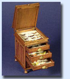 Butterflies chest open, Taller Targioni